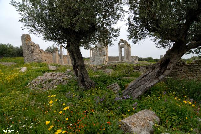 tn-2007-165___dougga,_caelestis_tempel,_222-235n,_tunesien_2007.jpg