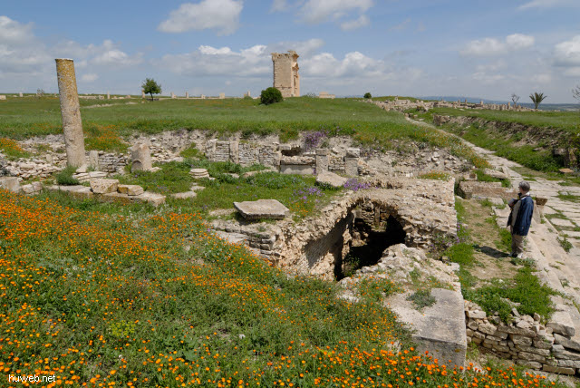 tn-2007-358___bacchus_tempel,_decumanus_(west_ost-strasse),_trajan_bogen,_elfi,_maktar,_tunesien_2007.jpg
