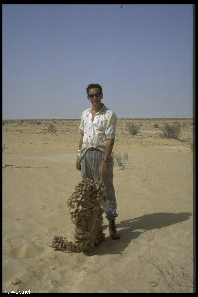 tun1999-28___tunesien1999,_sandrose_gross.jpg
