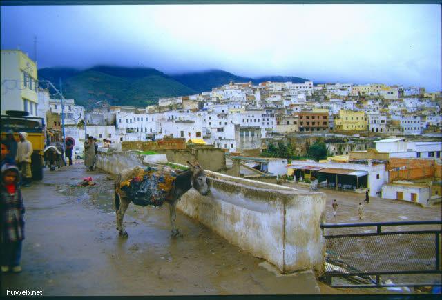 ac13_Moulay__Idriss__Marokko_27.12.85-5.1.86.jpg
