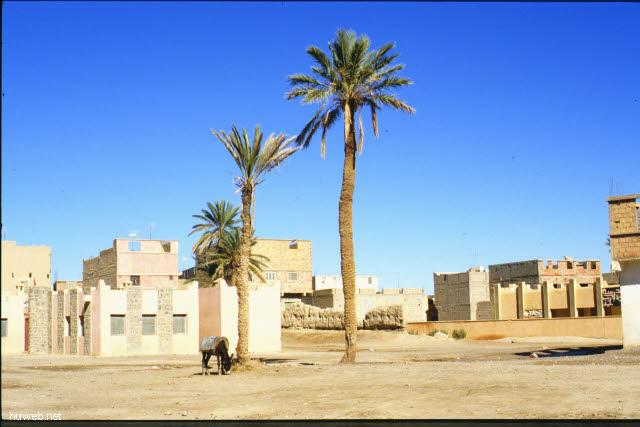 ad25_Marktplatz_Marokko_27.12.85-5.1.86.jpg