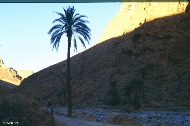 ad31_Todhra-Schlucht_Marokko_27.12.85-5.1.86.jpg